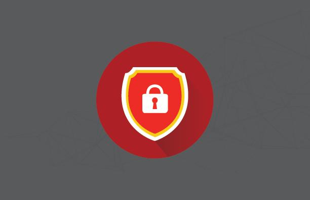 dataVault Icon